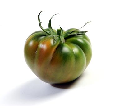 mifruta_tomate_raf